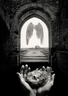 His story is untitled, fine art photographer Jerry Uelsmann