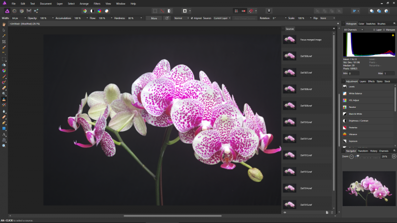 Affinity Photo includes the ability to perform focus stacking.