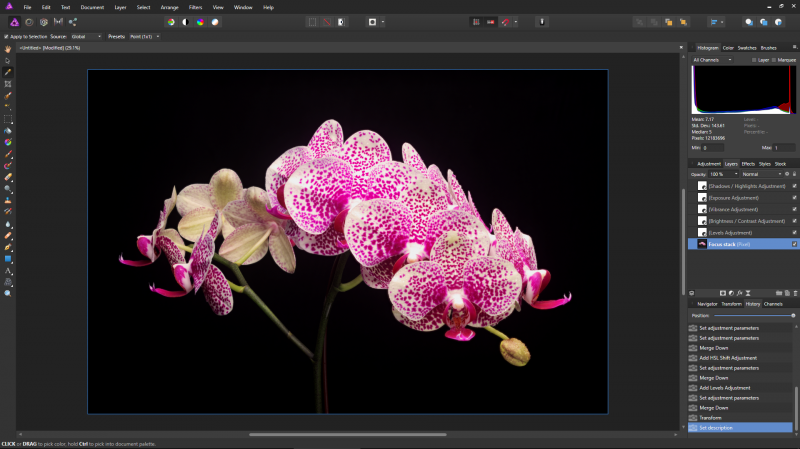The interface is familiar to Photoshop users. The layers and history subpanels track your every adjustment.